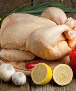 Pollo 100% BIO